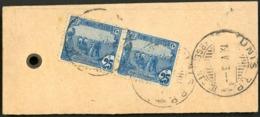 """ETIQUETTE DE COLIS POUR LA FRANCE EN 1913 / PAIRE Du N° 35 Obl. C-à-d """"TUNIS R.P. CHARGEMENTS III 19/5/13"""". SUPPORT RARE - Covers & Documents"""