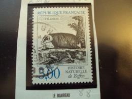 """1980-89  T. Oblitéré N°  2542    """"  Histoire Naturelle :  Le Blaireau   5.00"""" -  Net   0.50 - Usados"""