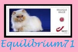 DUOSTAMP** / MYSTAMP** - Chat Persan / Perzische Kat / Persian Cat / Perserkatze - Sellos Privados