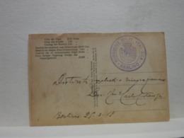 POSTA  MILITARE  I  GUERRA   --   GERMANIA  -- BOLLO MISSIONE MILITARE ITALIANA  - BERLINO - Oorlog 1914-18