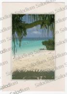 TANZANIA - Zanzibar Islands Beach At Nungwl - Judo - Tanzania