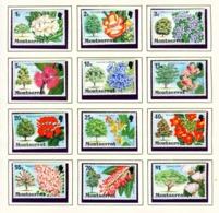 MONTSERRAT - 1976 Flowering Trees Definitives Set Unmounted/Never Hinged Mint - Montserrat
