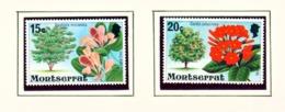 MONTSERRAT - 1980 Flowering Trees Definitives Chalk Surfaced Paper Set Unmounted/Never Hinged Mint - Montserrat