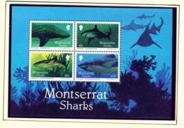 MONTSERRAT - 1987 Sharks Miniature Sheet Unmounted/Never Hinged Mint - Montserrat