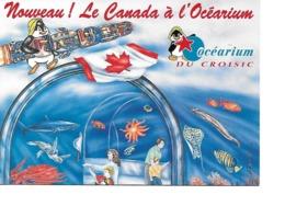 44 LE CROISIC Cpm Nouveau ! Le Canada S'invite à L'Océarium - Le Croisic