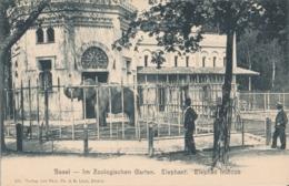BASEL ZOO - Suiza