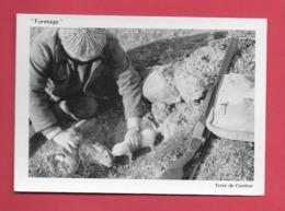 CPM 19 CORREZE..LE FURETAGE .Terre De Corrèze. Chasse. - Postcards