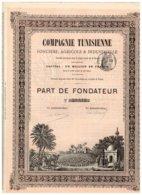 Titre Ancien - Compagnie Tunisienne Foncière, Agricole & Industrielle - VF - Déco - Rare - Afrika
