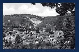 Aywaille Sur Amblève. Panorama Du Centre.(vers Le Pont, La Chera Et La Brassine).  Publicité Pension La Brassine - Aywaille
