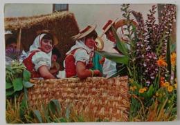 TENERIFE - Espana - ROMERIA TIPICA / TYPIC PILGRIMAGE - Costume Folklorique - Costumes Vg - Vestuarios