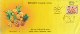 India 2018  Fruits  Pineapples  Tripura  Special Cover  # 15846  D  Inde Indien - Fruits