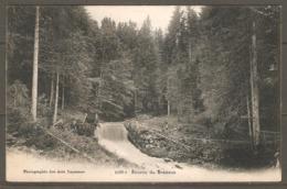 Carte P De 1905 ( Source Du Brassus) - VD Vaud