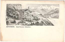 CPA Beatenberg Hôtel Pension Silberhorn Berne Suisse - BE Berne