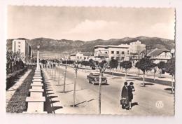 Batna , Les Allées Bocca - Carte Neuve Ed. Alexandre Sirecki - - Batna