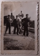 Train Railway, Treno Ferrovia - Photo - Locomotive, Railroad Engineer - Macchinista - Trenes