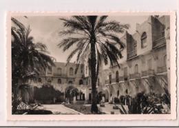 Biskra: Hôtel Transatlantique - Carte Neuve Ed. Photo-Africaines, Alger - - Biskra