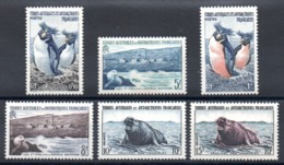TAAF - YT N° 2 à 7 - Neuf * - MH - Cote: 51,40 € - French Southern And Antarctic Territories (TAAF)