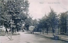 Namur - Avenue Du Prince Albert - Namur