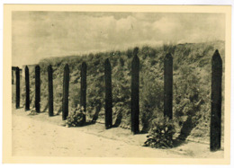 Nationaal Gedenkteken Van Het Fort Van Breendonk, Executiepalen (pk63014) - Puurs