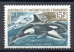 TAAF - YT N° 30 - Neuf * - MH - Cote: 16,00 € - French Southern And Antarctic Territories (TAAF)