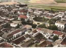 CPSM ALGERIE - Jemmapes - Vue Générale - Autres Villes