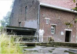 BRUSSEGEM Bij Merchtem (Vlaams-Brabant) - Molen/moulin - Molen Van Neerkam Met De Laatste Molenaar Emilie Berben (1977) - Merchtem