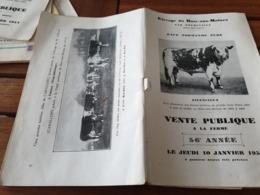 DOUDEVILLE  /VENTE PUBLIQUE DE RACE NORMANDE PURE 1952 - Animali