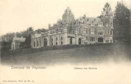 Belgique - Environs De Pepinster : Château Des Mazures - Nels Série 96 N° 10 - Pepinster