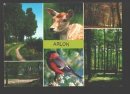 Arlon - Carte Multivues - Hert / Ree / Biche / Cerf - Arlon