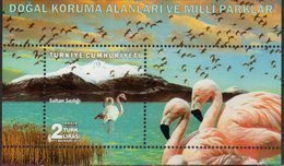 TURKEY, 2018, MNH, BIRDS, FLAMINGOES, MOUNTAINS, NATIONAL PARKS, SHEETLET - Flamencos