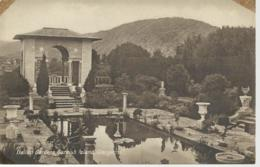 28918) Ireland Glengarriff Italian Gardens Garnish Island - Cork