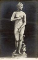 Cartolina Antica VENERE DE' MEDICI (Galleria Uffizi, Firenze) - OTTIMA R18 - Sculture