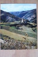 Photo Couleur 23,7x30cm - La Cerdagne Française - Ed. Theojac 66/119 - Places