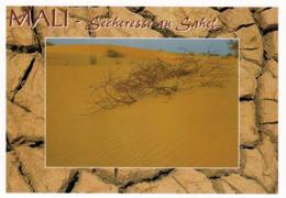 1 AK Mali * Sécheresse Au Sahel - Dürre In Der Sahelzone In Mali * - Mali