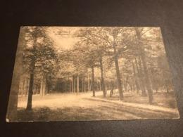 OOSTMALLE: De Heeredreef, Gelopen Postkaart (Malle) - Malle