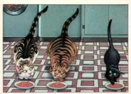 CPM - CHAT - Carte Illustrée Gilles BACHELET - Edition Prodiver - Katten