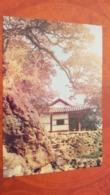 KOREA NORTH 1950s  Postcard - Korea (Noord)