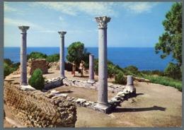 °°° Cartolina - Isola Di Giannutri Villa Romana Nuova °°° - Grosseto