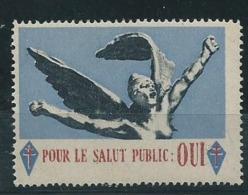 3172 - Pour Le Salut Public Oui... Croix De Lorraine Charles De Gaulle - Libération