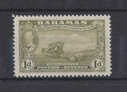 BAHAMAS.......KING GEORGE VI.(1936-52)....1d.....SG179.........MH... - Bahamas (...-1973)