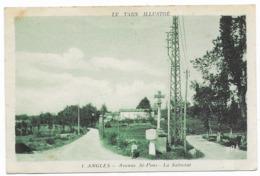 Anglès Avenue St-Pons La Salvetat - Angles