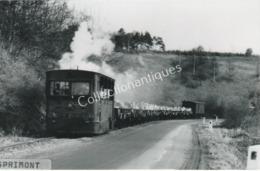 Carte Postale Photographique Train De Sprimont - Treni