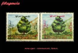 ASIA. IRAK MINT. 1965 SEMANA DEL ÁRBOL - Irak