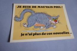 BELLE ILLUSTRATION HUMORISTIQUE...CHAT DE MAUVAIS POIL.. - Alexandre
