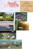 TICKETS CHATEAUX DE LA LOIRE CHENONCEAU-AMBOISE-CHEVERNY-CHAMBORD2-VILLANDRY-USSE2- CLOS LUCE PARC DA VINCI - Tickets - Vouchers