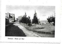 EN011 - CENTURIPE - PIAZZA A. DIAZ - ENNA - F.G. VIAGGIATA 1954 - Enna
