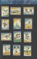 SPORT ICE HOCKEY ATHLETICS WEIGHT LIFTING SHOT PUT GOLF HIPPIQUE TENNIS ETC.. Matchbox Labels Made Former CZECHOSLOVAKIA - Matchbox Labels