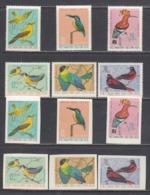 Vietnam Nord 1966 - Birds, Mi-Nr. 456/61, Perf.+imperf., MNH** - Viêt-Nam