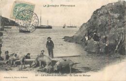 CPA 22 Côtes D'Armor Du Nord Le Légué St Saint Brieuc La Cale De Halage Porcs Cochons Bateaux Enfants - Saint-Brieuc