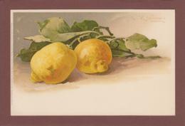 Catharina KLEIN - Signé - Fruit - Citron - Klein, Catharina